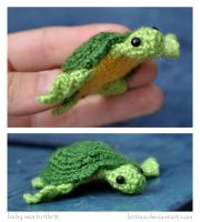 Baby Sea Turte by Kridah