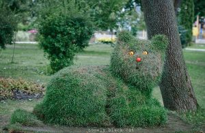 Cat from the grass by Lonely-black-cat
