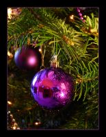 Oh Christmas Tree... by jendonoghue