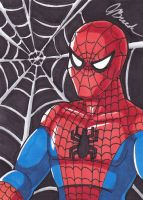 Sketch Card #136 - Spidey by destinyhelix