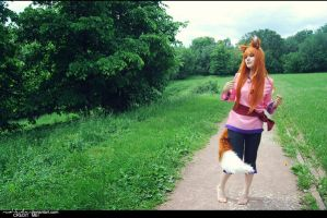 Spice and Wolf 2 by Eletiel