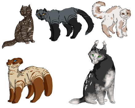 OPEN 3/5 WTA Cat adopts by OverLord-Adopts