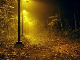 a trail at night by wirelessnic