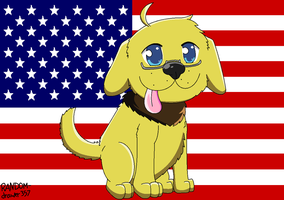 Inutalia - Ameridog! by RANDOM-drawer357