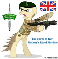 Her Majesties Royal Marines by FirstAwesomePlatoon