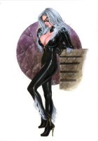 Black Cat NW#25 by AlexMirandaArt
