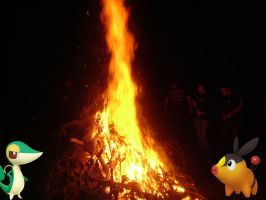 Snivy and Tepig around the bonfire! by ryanthescooterguy