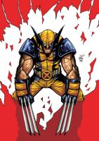 Wolverine: Rage by shiprock