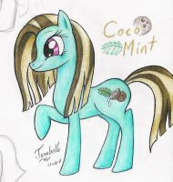 Introducing: Coco Mint by Josabella