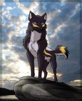 Lone wolf by Zerwolf