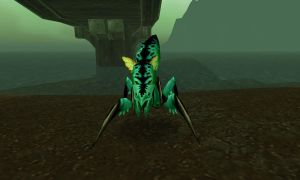 WoW Pets: Silithid by DancingFerret
