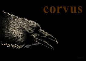 Corvus by Culpeo-Fox