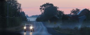 Long Drive Ahead by Alvyna