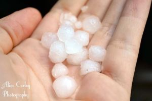 Hailstones by alicecorley
