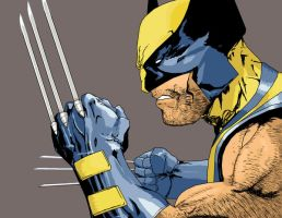 Wolverine by Tbopi