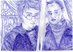 Harry and Hermione Drawing by lorni3