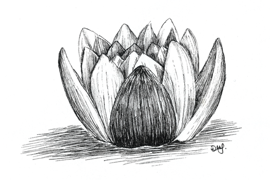 Water lily for Day 23 of Inktober by Wenchkin