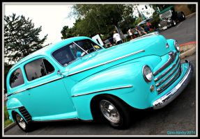 Turquoise Jewel by StallionDesigns
