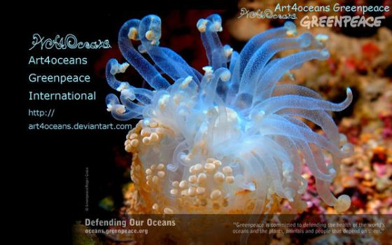 Our DeskTop :p by art4oceans