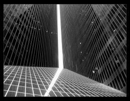 lines of houston by syncretism