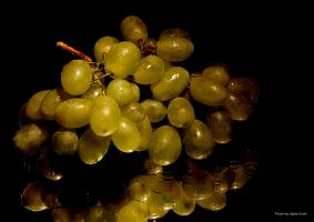 Grapes ... by AgataSwat