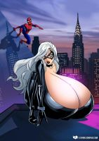 Black Cat's Busted Burglary by expansion-fan-comics