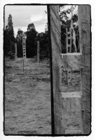 Ladders - Hill End III by KateStehr