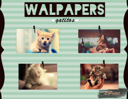 Wallpapers Gatitos by LePettit