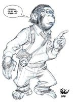 PARKER CHIMP by Wieringo