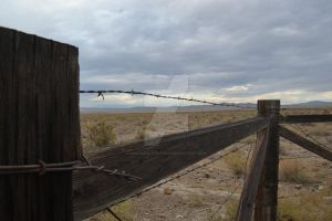The End of the Fences - Open Spaces of Nevada by ChaosWolfPictures