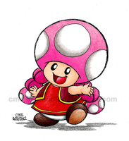Another Toadette by cmdixon589