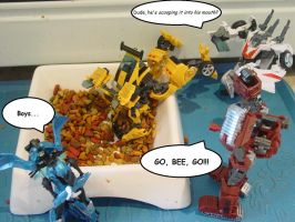Bumblebee Likes Cat Food by EricGroff