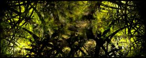 Overgrowth by sequential