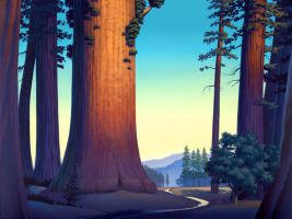 sequoia dawn by David-McCamant