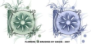 Flowers Brushes by GieGie