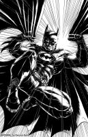 The Dark Knight by derrickfish