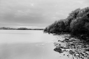 Lough Erne shore bw by Indigo-squirrel
