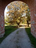 Karksi Castle ruins and moat 150 by MASYON