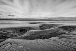 Mud Flats Cook Inlet by lumixologist