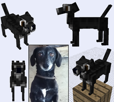 Minecraft Mob: Dot the Dog by akitasilverwolf