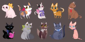 Cat University by ennemme