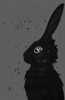 The Black Rabbit of Inle by kypswei