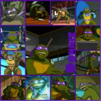 TMNT:: Donnie: collage: 2003 by Culinary-Alchemist