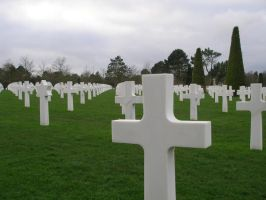 Normandy graves01 by europestock