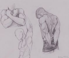 Small Anatomy Study by MobsterQueenPin