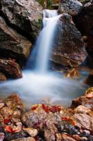 Colors in Waterfall by lica20