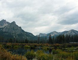 Swamps of the Mountains' Valley Floor by LonelyBookWorm