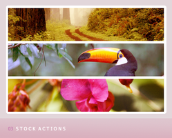 03 stock actions by Bourniio