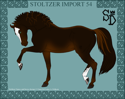 Stoltzer Import 54 by DovieCaba