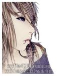 This is the last lie by Tidus-902000